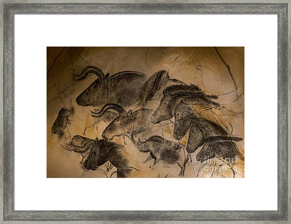Chauvet Framed Print