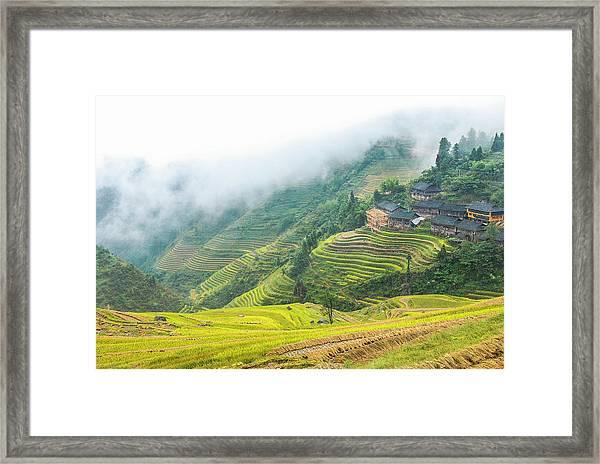 Terrace Fields Scenery In Autumn Framed Print