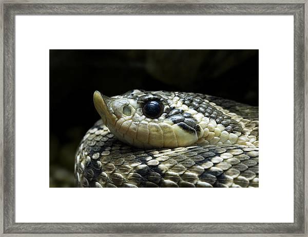 160115p141 Framed Print