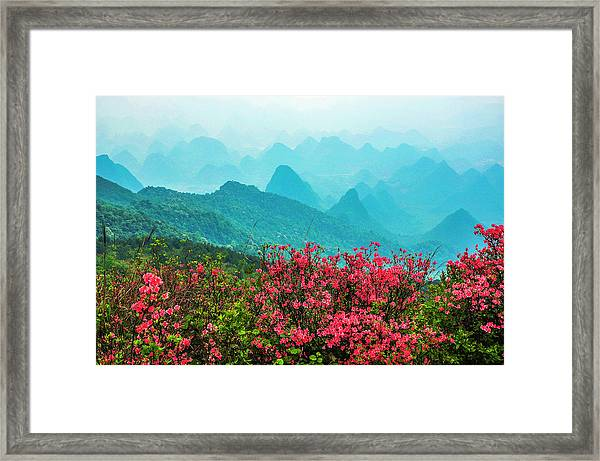 Blossoming Azalea And Mountain Scenery Framed Print