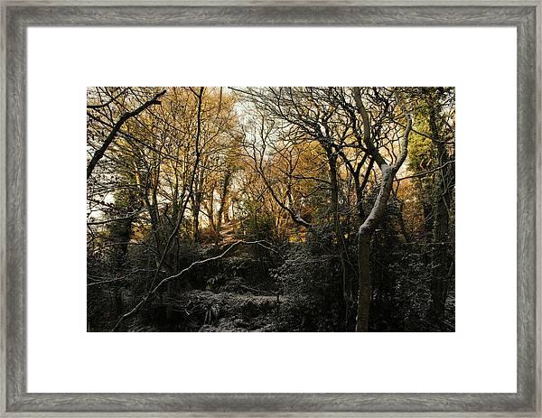 Snowy Cabin Wood Framed Print