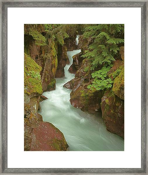 1m8115 Avalanche Gorge Mt Framed Print