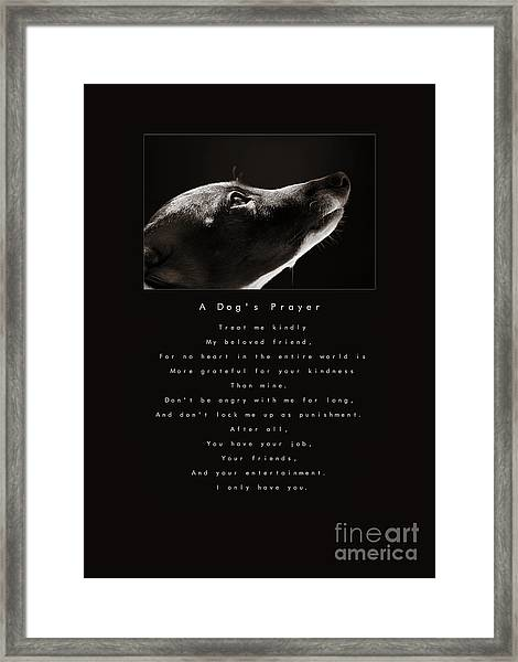 A Dog's Prayer  A Popular Inspirational Portrait And Poem Featuring An Italian Greyhound Rescue Framed Print