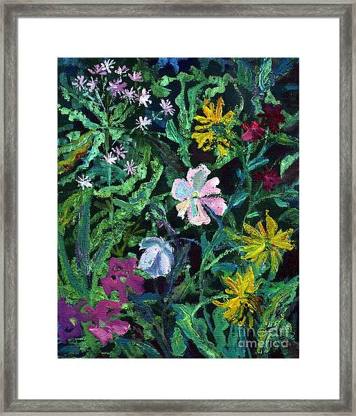 Anemones Framed Print by Katia Weyher