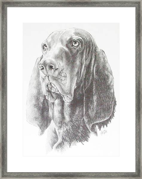 Black And Tan Coonhound Framed Print