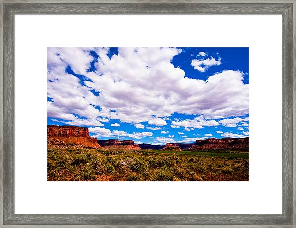 Canyonland N.p. Framed Print by Larry Gohl
