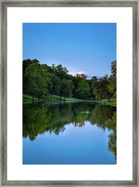 2 Ducks Framed Print