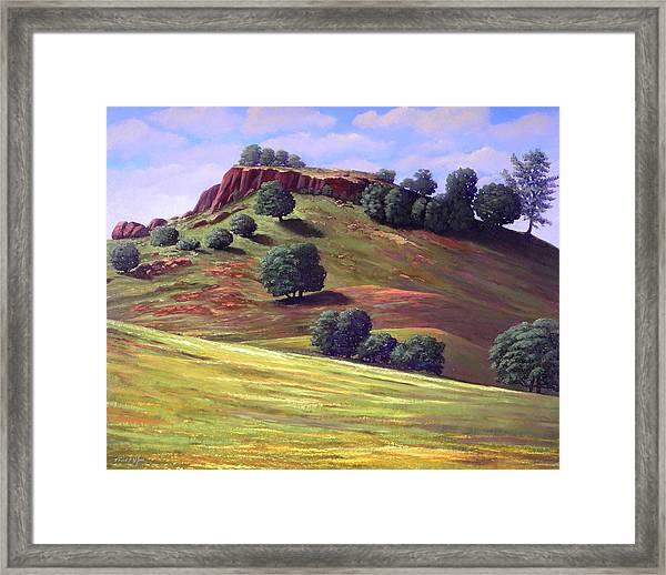 Flowering Meadow Framed Print