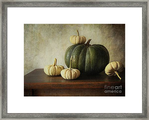 Green Pumpkin And Gourds On Table  Framed Print