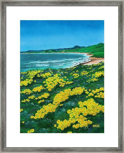 Jalama Beach Framed Print