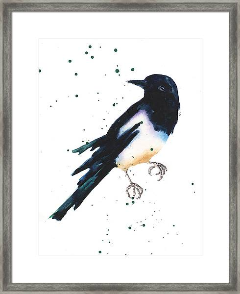 Magpie Painting Framed Print