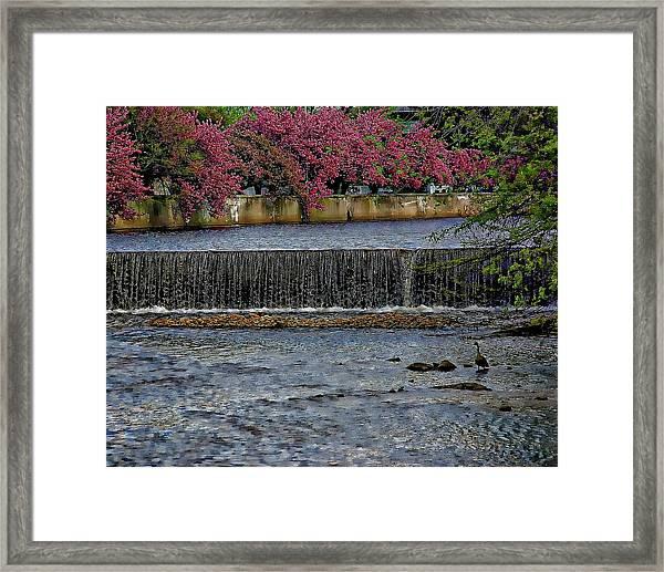 Mill River Park Framed Print