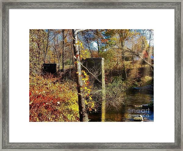 Northeast Framed Print