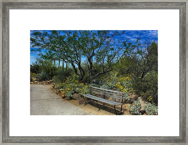 Peaceful Moment Framed Print
