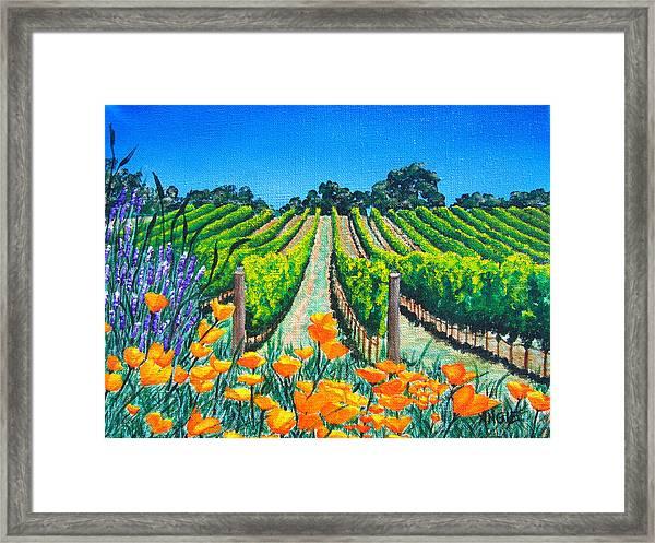 Presidio Vineyard Framed Print