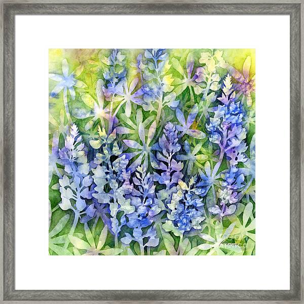 Texas Blues  Framed Print