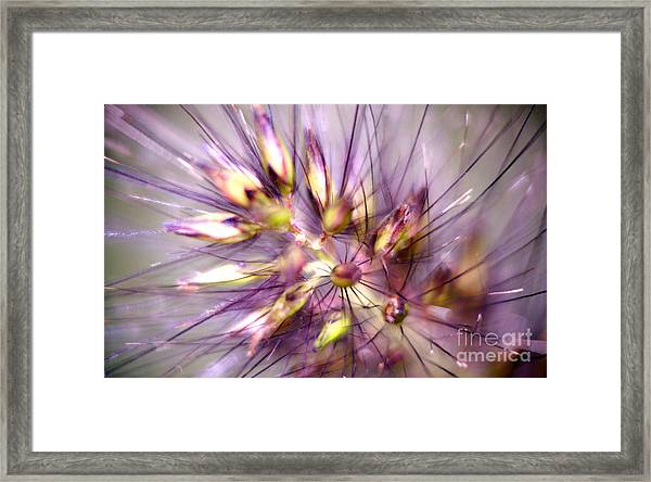 The Inner Good Framed Print