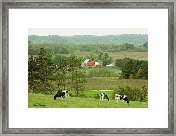 Valley Girls Framed Print