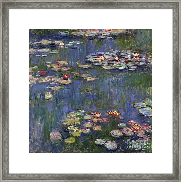 Water Lilies, 1916 Framed Print