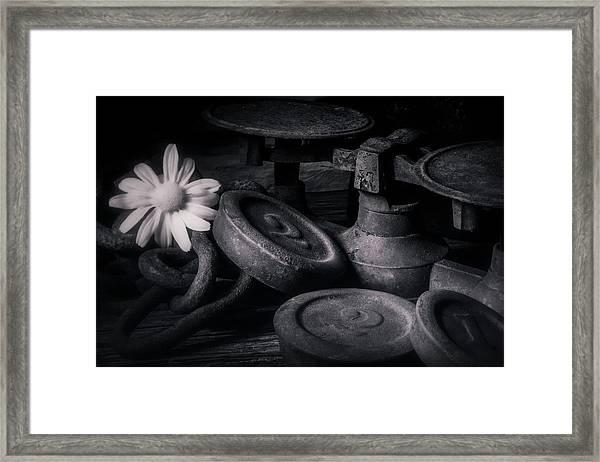 221 Framed Print