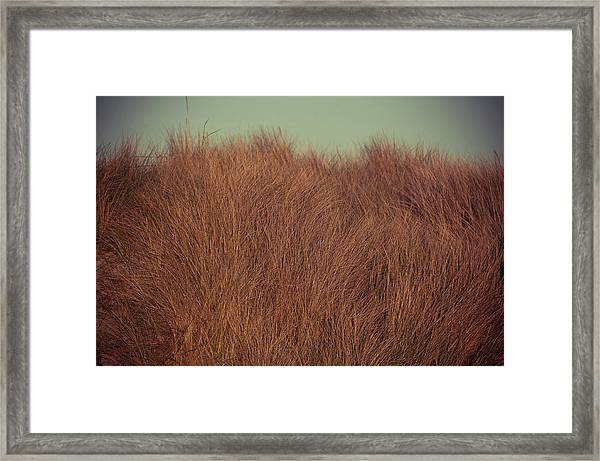 Beach Houses And Dunes Framed Print