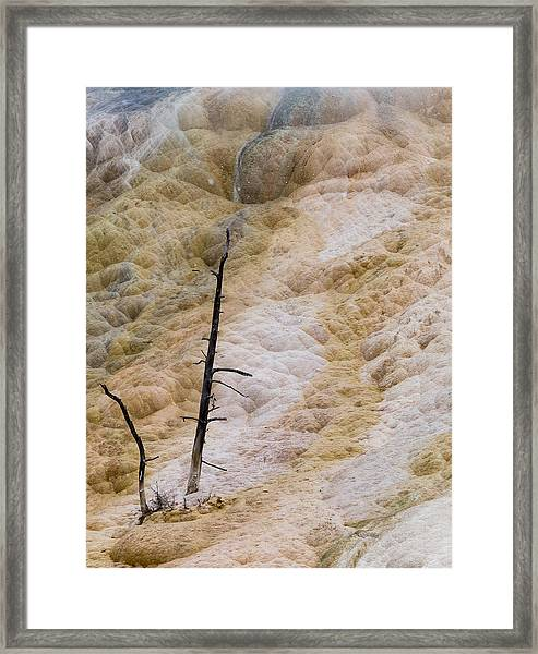 Mammoth Hot Spring Terraces Framed Print