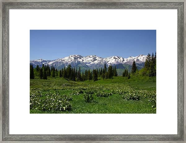 Mountain Spring Framed Print
