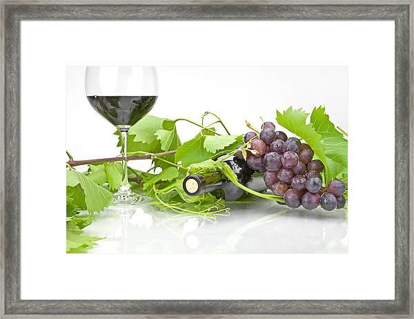 Red Wine Framed Print