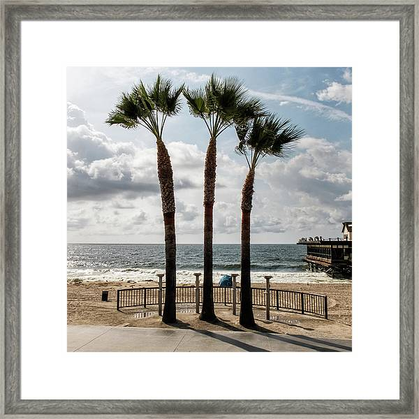 Framed Print featuring the photograph 3 Trees by Eric Lake