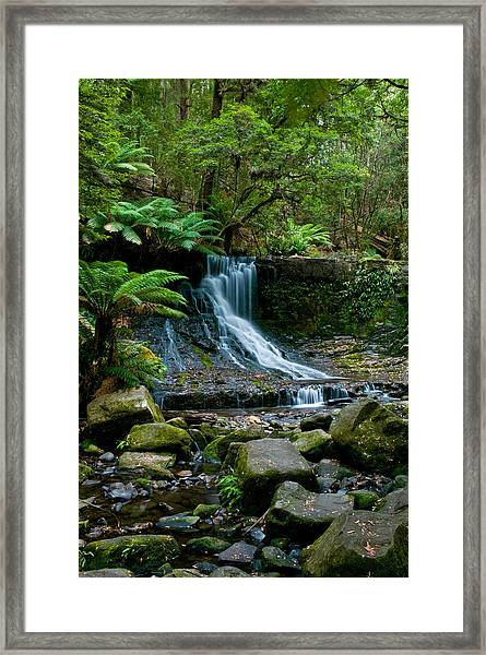 Waterfall In Deep Forest Framed Print