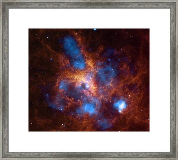 30 Doradus And The Growing Tarantula Within Framed Print
