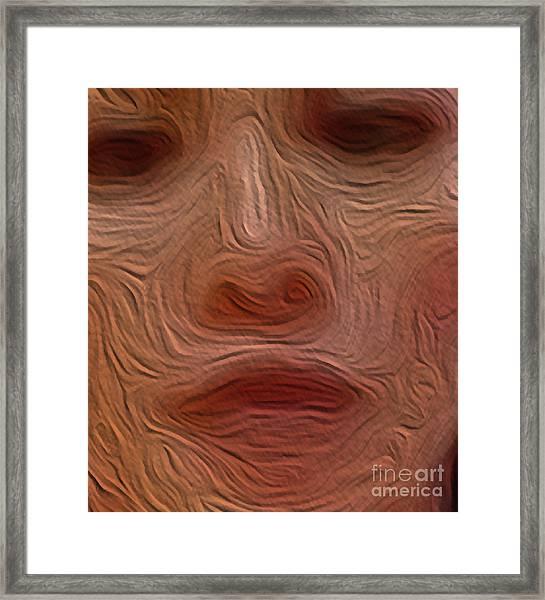 4-30-3057n Framed Print