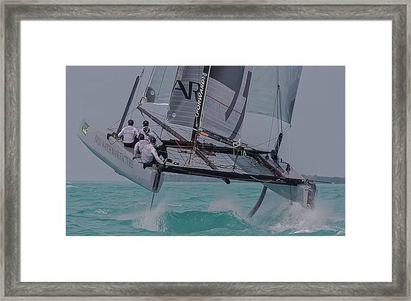 Flying High Framed Print