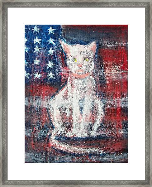 4th Of July Baby Framed Print by Roxanna Finch