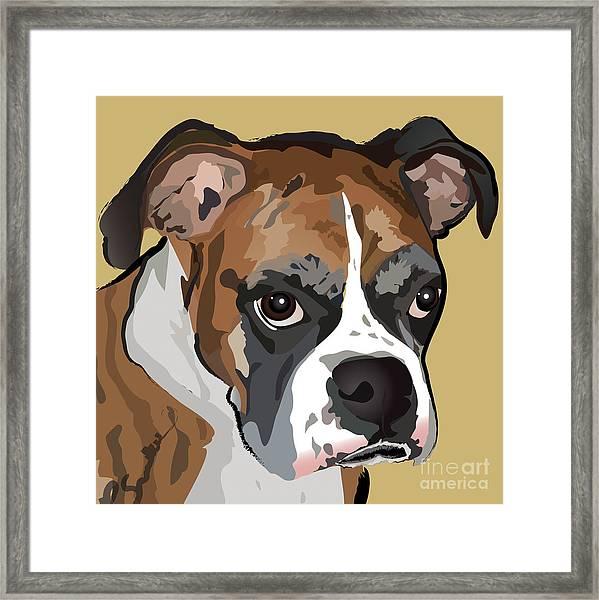 Boxer Dog Portrait Framed Print