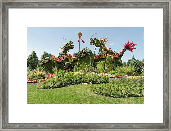 From Beijing Is  Blessing Of The Good Omen Dragons. Framed Print
