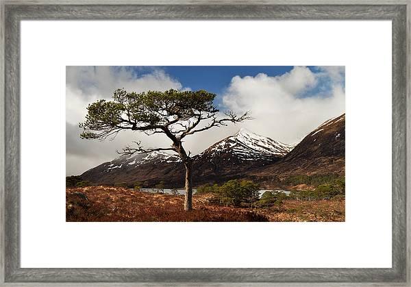 Glen Affric Framed Print