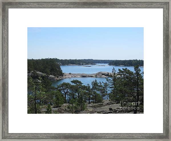 In Stendorren Nature Reserve Framed Print