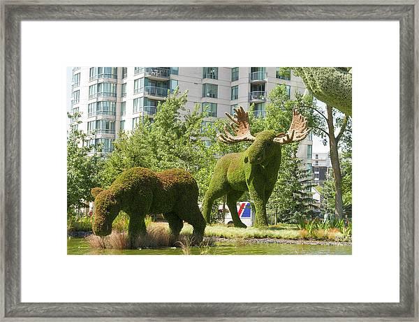 Mosaicanada 150 Display 2 Framed Print