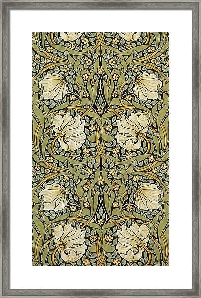 Pimpernel Framed Print