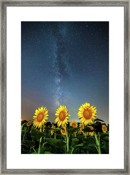 Sunflower Galaxy IIi Framed Print