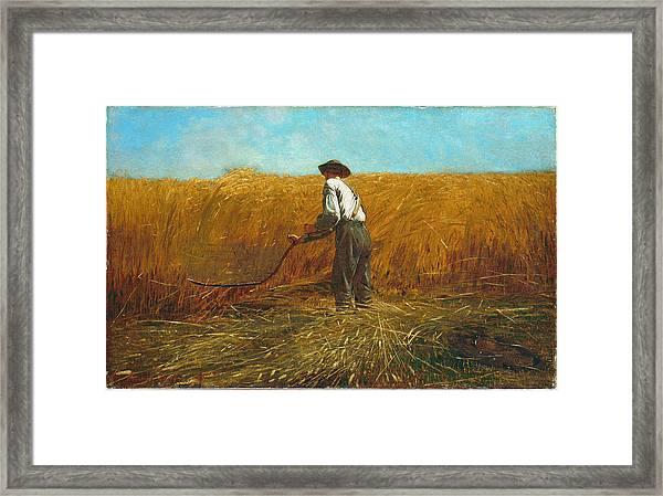 The Veteran In A New Field Framed Print