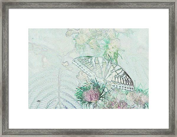 5813 5 Framed Print by Jim Simms
