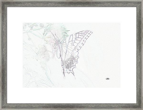 5816 3 Framed Print by Jim Simms