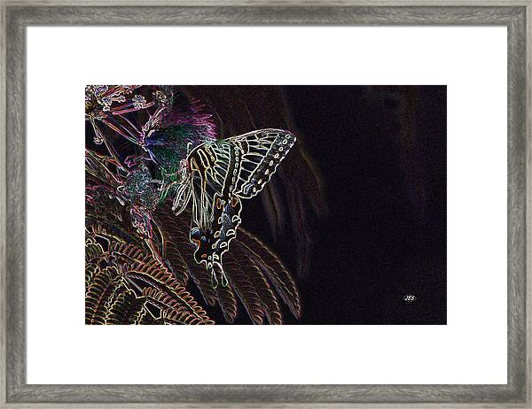 5819 2 Framed Print by Jim Simms