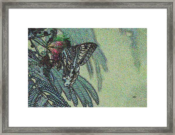 5819 4 Framed Print by Jim Simms
