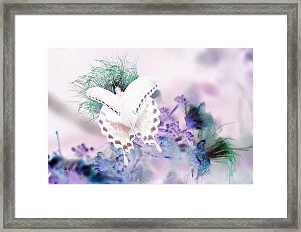 5848 3 Framed Print by Jim Simms