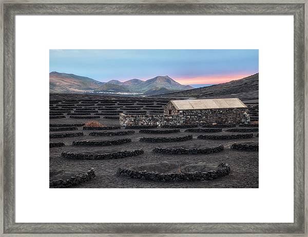 La Geria - Lanzarote Framed Print