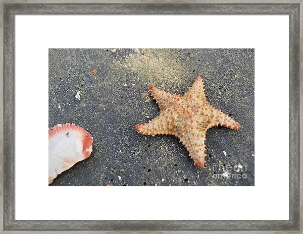 Loyda's Point Of View Framed Print
