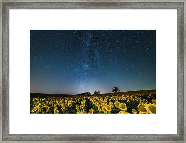 Sunflower Galaxy Framed Print